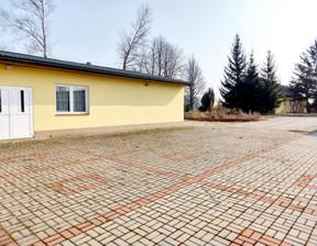 Lokal usługowy na sprzedaż, Wysokomazowiecki (Pow.) Szepietowo (Gm.) Plewki, 1 990 000 zł, 10 827 m2, L/L/2021