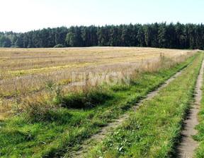 Działka na sprzedaż, Mogileński Strzelno, 220 000 zł, 13 172 m2, 3381