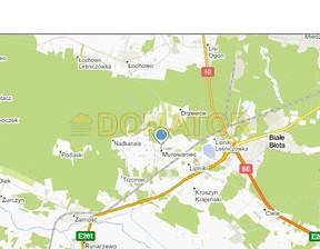Działka na sprzedaż, Bydgoski Białe Błota Murowaniec, 600 000 zł, 20 000 m2, DMT-GS-107761