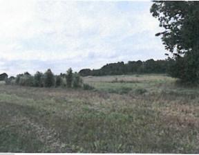 Działka na sprzedaż, Dąbrowski (Pow.) Mędrzechów (Gm.) Wólka Grądzka, 12 950 zł, 9700 m2, gc0004206