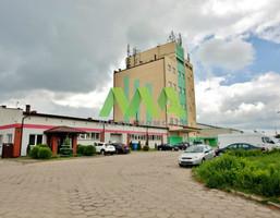 Biuro na wynajem, Ełcki Ełk Nowa Wieś Ełcka, 650 zł, 18 m2, MOR-LW-1592