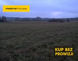 Działka na sprzedaż, Mławski Lipowiec Kościelny Lewiczyn, 150 000 zł, 47 800 m2, HEFY431
