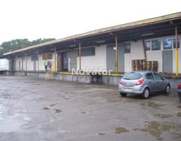 Magazyn na wynajem, Bydgoszcz M. Bydgoszcz Błonie, 10 395 zł, 770 m2, NOV-HW-140309