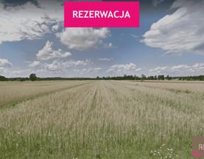 Działka na sprzedaż, Turecki (Pow.) Władysławów (Gm.) Skarbki, 69 000 zł, 25 600 m2, 268