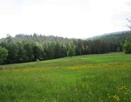 Działka na sprzedaż, Myślenicki (pow.) Tokarnia (gm.) Tokarnia, 55 000 zł, 684 m2, 5150