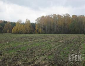 Rolny na sprzedaż, Żyrardowski Mszczonów Lindów, 352 000 zł, 32 000 m2, 31