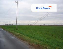 Działka na sprzedaż, Pawłów Trzebnicki, 850 000 zł, 16 700 m2, 489751