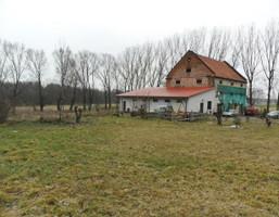 Dom na sprzedaż, Poddębicki Poddębice Niewiesz, Kolonia, 440 000 zł, 480 m2, KWK-DS-1018-1