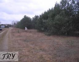 Budowlany-wielorodzinny na sprzedaż, Pabianicki (Pow.) Dłutów (Gm.) Drzewociny Drzewociny, 49 000 zł, 1400 m2, 454929