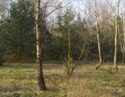 Rolny na sprzedaż, Poddębicki (Pow.) Zadzim (Gm.) Chodaki Chodaki, 90 900 zł, 30 300 m2, 491689