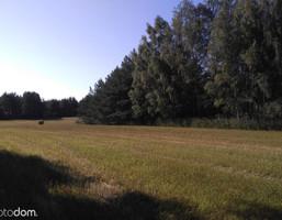 Działka na sprzedaż, Hajnowski (pow.) Narew (gm.) Narew, 90 000 zł, 3000 m2, 1