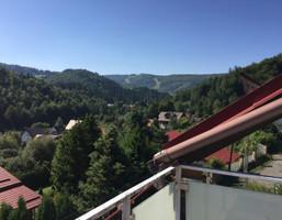 Hotel na sprzedaż, Cieszyński (pow.) Wisła Brzozowa 14, 1 256 000 zł, 3706 m2, gc0002743