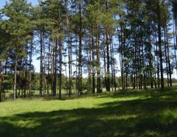 Działka na sprzedaż, Chełmiński (Pow.) Stolno (Gm.) Grubno, 59 000 zł, 1000 m2, 241