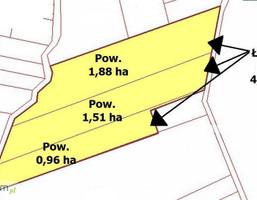 Działka na sprzedaż, Mławski Lipowiec Kościelny Lewiczyn, 174 000 zł, 43 500 m2, 151