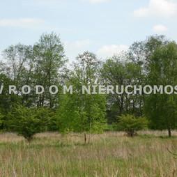 Działka na sprzedaż, Trzebnicki Wisznia Mała Ozorowice, 100 000 zł, 1315 m2, WRO-GS-28900